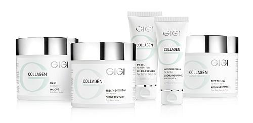 collagen elastin